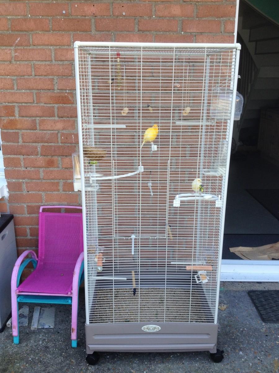 Carla aviary aviaries for Carla de klerk interieur