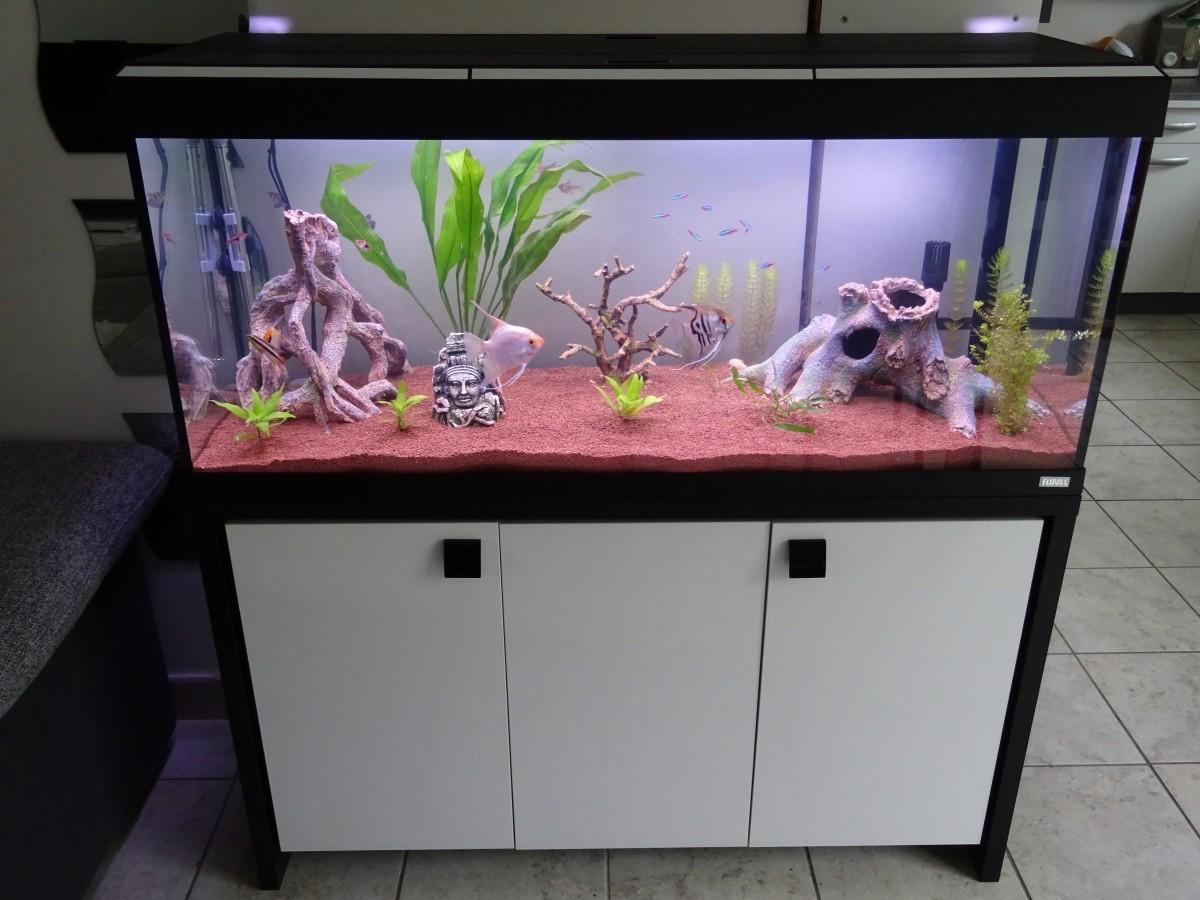 Fluval roma 240 aquarium fish tank - Aquarium Roma 240 Tout Equipe Meuble_de_vincent_185065653856b61cf0465a16 39893178